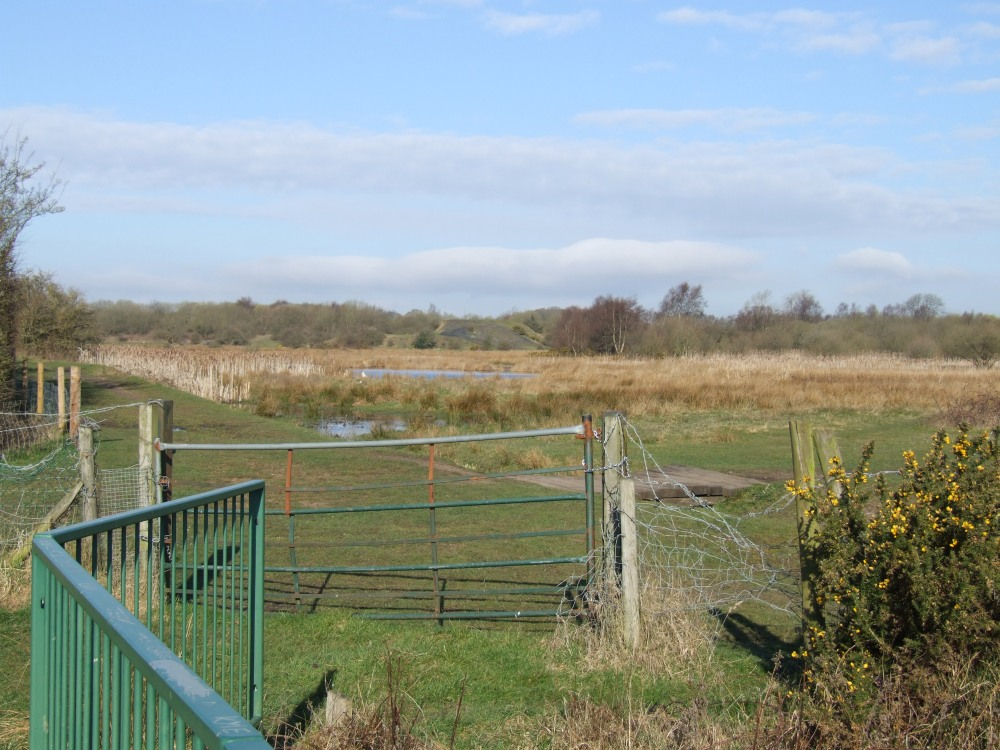 Clayhanger Marshes SSSI. Image by madwblog.